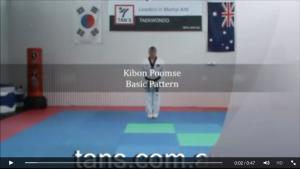 Grandmaster Tan Basic Pattern